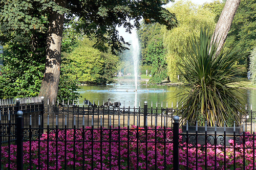 View over the Lake, Cannon Hill Park