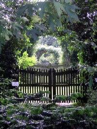 Arboretum Kalmthout, Belgium