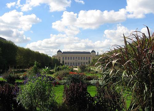 Jardin des Plantes in Autumn