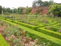 Culinary Herb Garden Layout