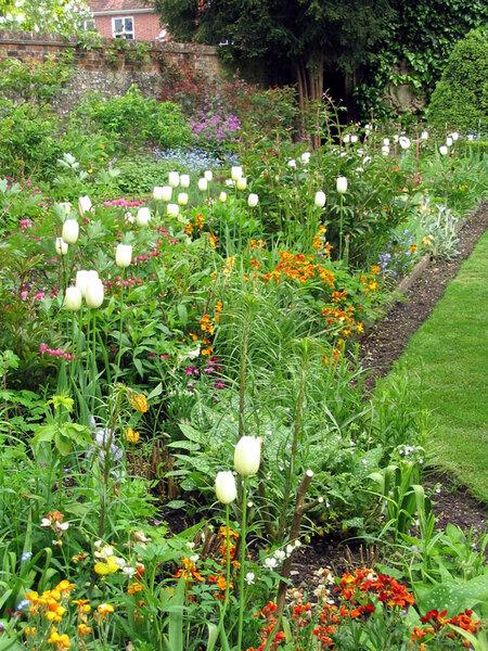 Mompesson House Garden, Spring