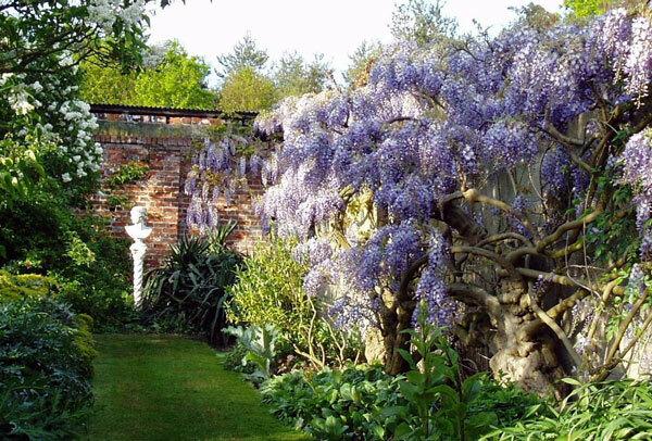 Wickham Place Farm Gardens