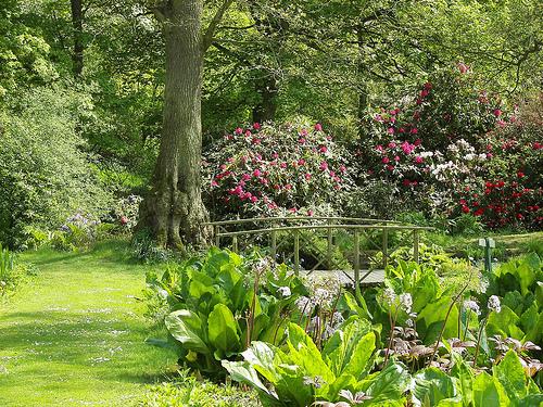 Constable Burton Hall Garden