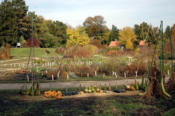 Vácrátót Botanical Garden