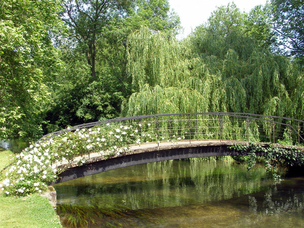 Bridge with white climber rose, Mottisfont Abbey Garden