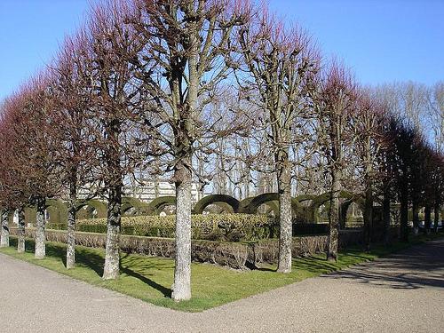Jardin des Pres Fichaux, Bourges