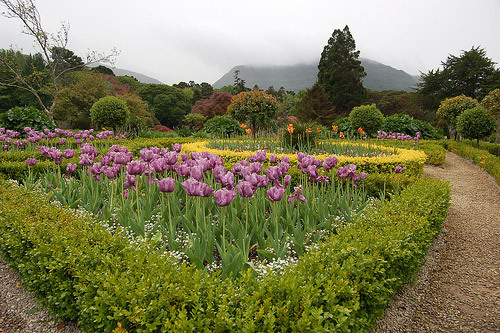 Muckross House Gardens, County Kerry