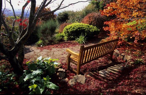 Bench, Mount Tomah Botanic Garden