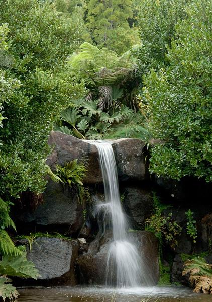 Waterfall, Mount Tomah Botanic Garden