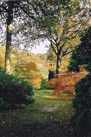 High Beeches Garden in Autumn