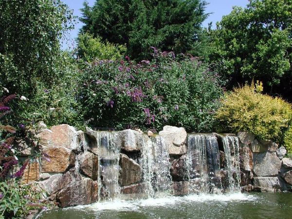 Waterfall, Reg's Garden