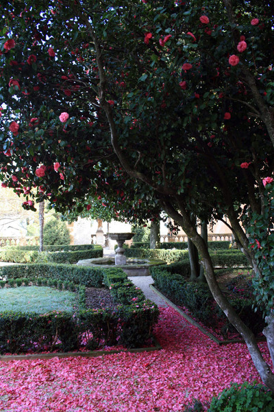 Villa Mondragone Garden