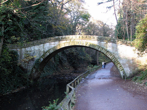 Bridge, Jesmond Dene