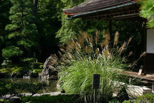 Ginkakuji, Silver Pavilion Garden