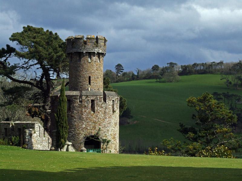 Garden Centre: Caerhays Castle Garden