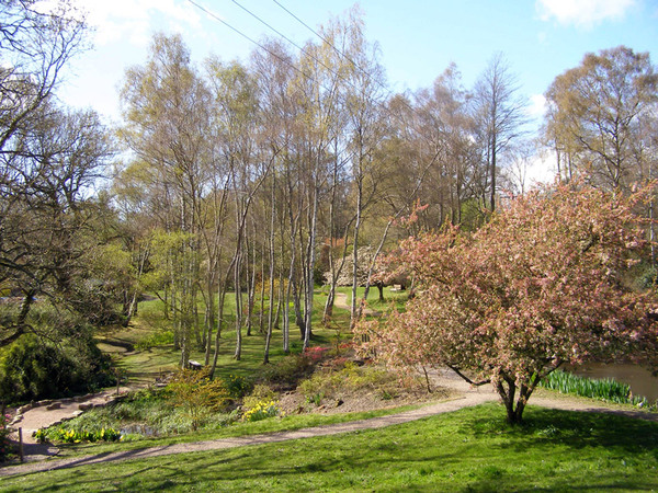 Furzey Gardens, Hampshire
