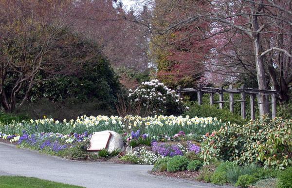 Century Gardens in Spring