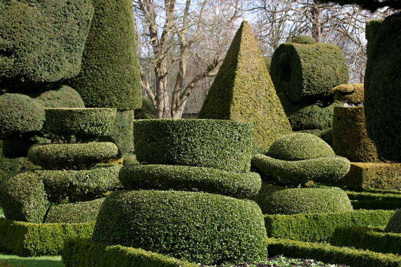 Topiary, Levens Hall Garden