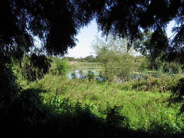 Ingatestone Hall Garden, Essex