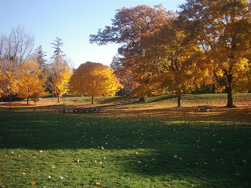 Springbank Park in Autumn