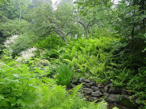 Reford Gardens, Quebec