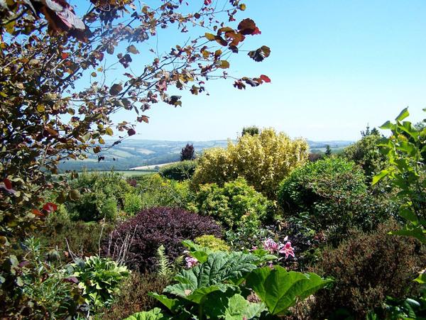 Ken-Caro Gardens