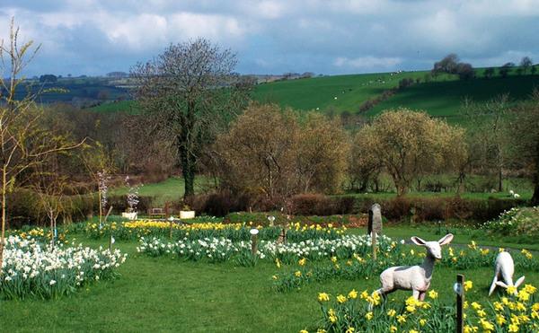 Norwood Gardens in Spring