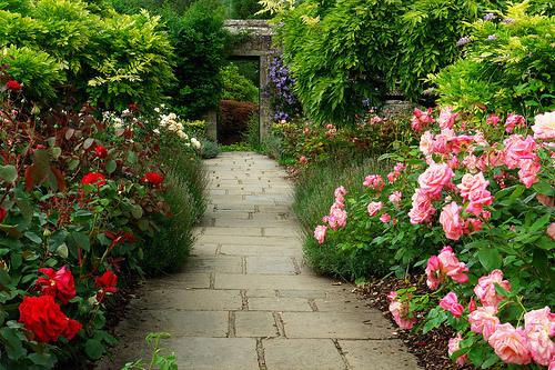 Chartwell Garden, Kent