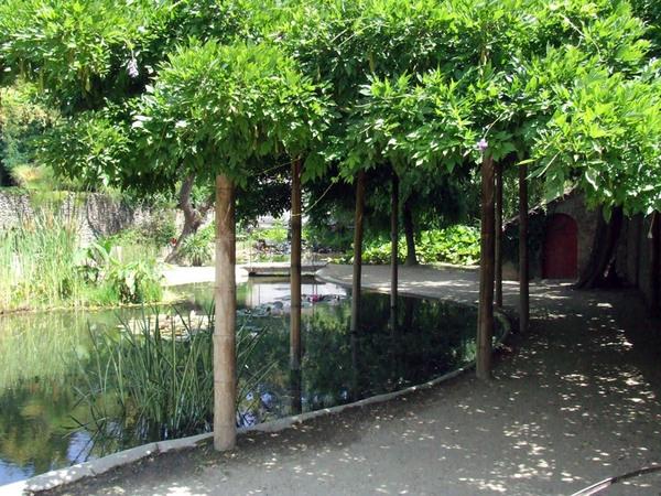 Bambouseraie de Prafrance Garden, 2007