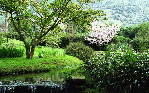 Giardino E Rovine De Ninfa
