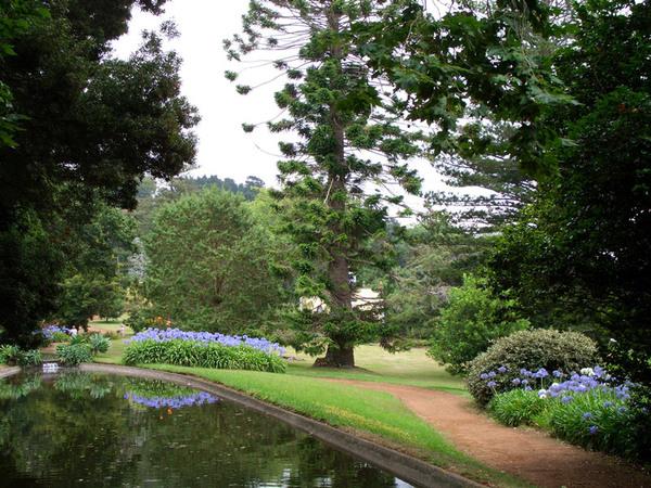 Quinta do Palheiro Ferreiro Garden