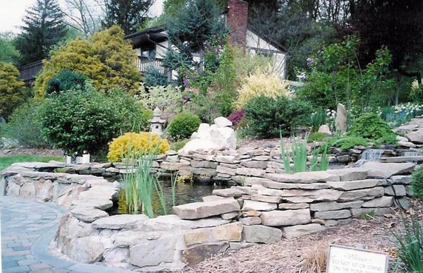 Pond, Renziehausen Park Rose Garden