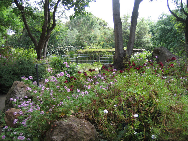 La Mortella Garden, Ischia