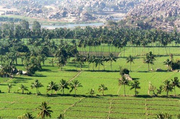 Hampi Vijaynagara