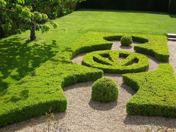 Hedges, Penshurst Place Garden