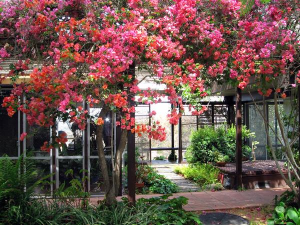 Hortense Miller Garden, Laguna Beach