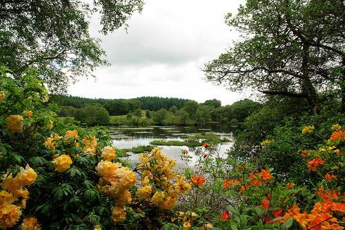 Barguillean Angus Garden, Scotland