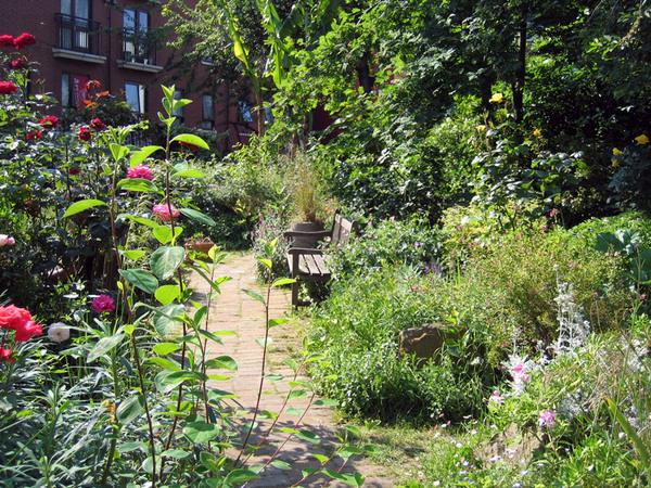 Phoenix Garden, London