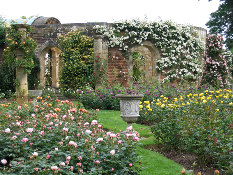 Rose Garden, Hever Castle