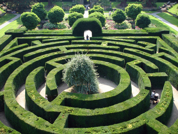 Maze, Chatsworth Garden