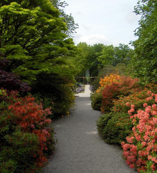 Castle Drogo Garden, Devon