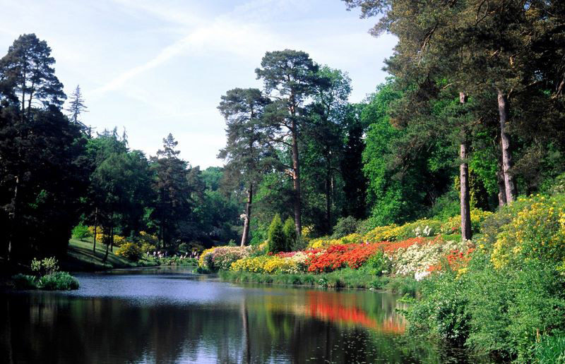 Leonardslee Gardens and Lakes, West Sussex
