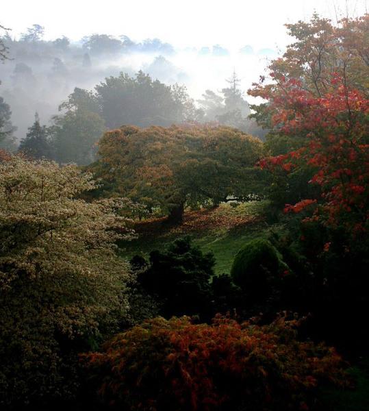 Leonardslee Gardens & Lakes, Autumn