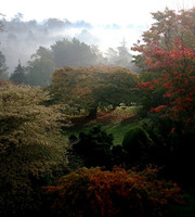 Medium leonardslee gardens autumn original