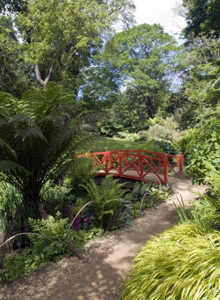 Bridge, Abbotsbury Gardens