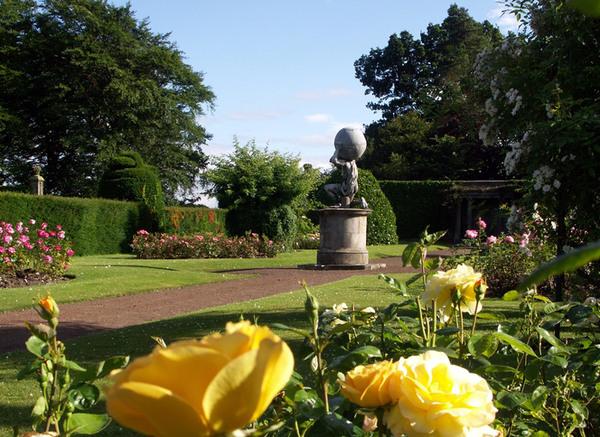 Kinross House Garden