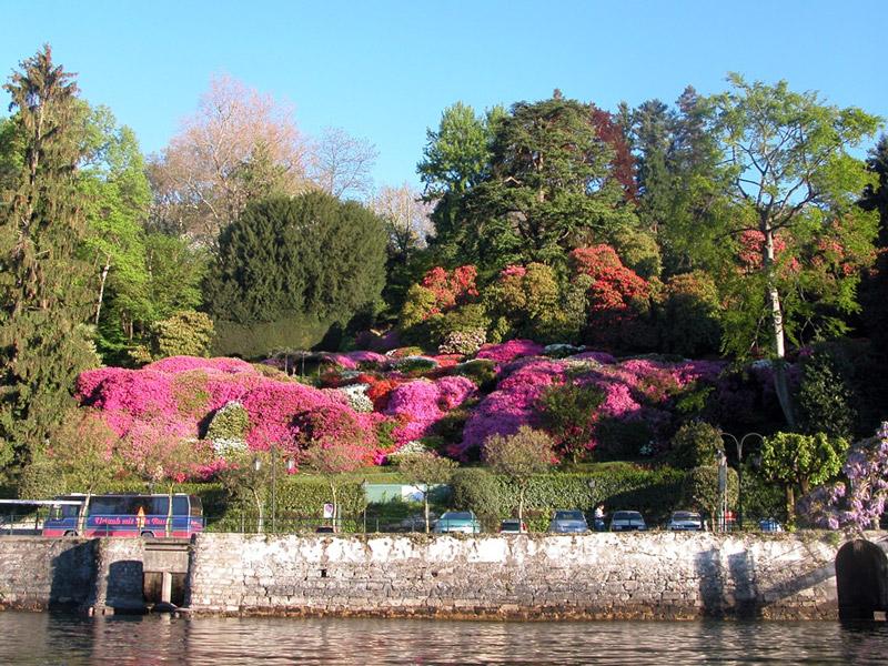 Beautiful natural gardens - Villa Carlotta