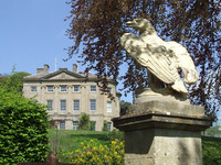 Medium claverton manor eagle original