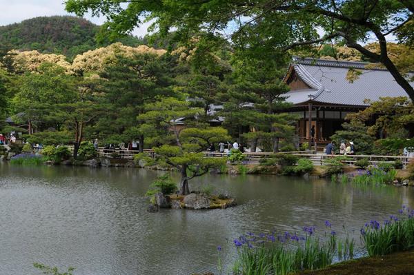 Kinkaku-ji, May 2008