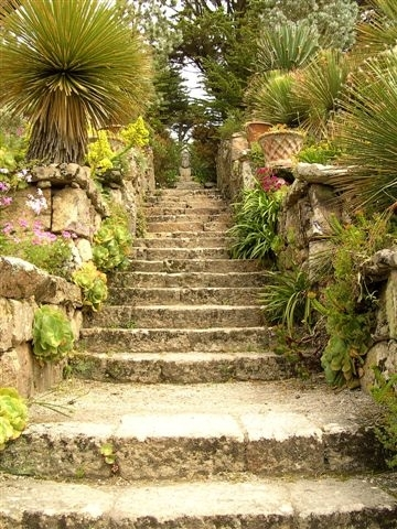 Steps, Tresco Abbey Gardens